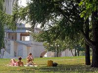 Три десятка столичных парков будут благоустроены к осени. 265001.jpeg