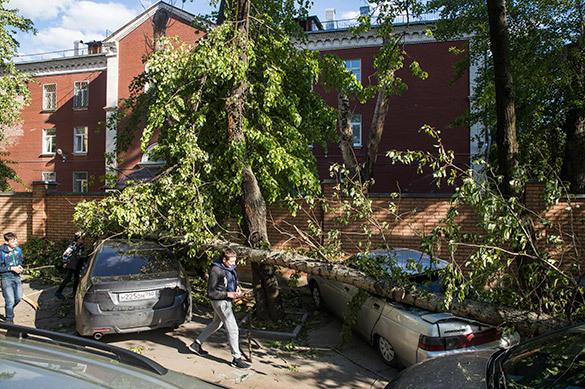 Последствия урагана в Москве