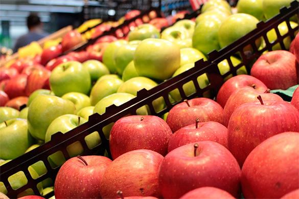 Импорт белорусских яблок и грибов в РФ в 5 раз превысил собранны