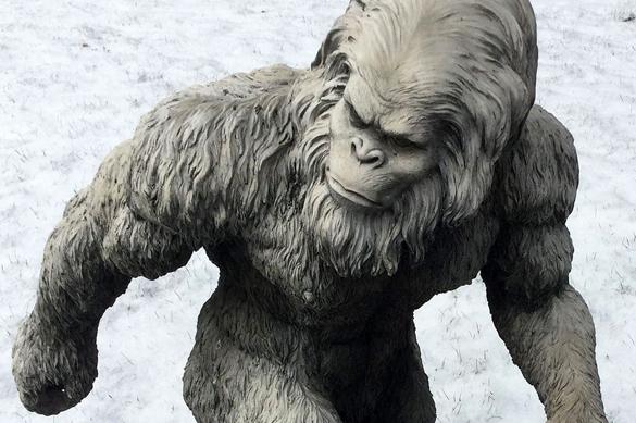 Ученые: снежный человек существует