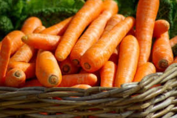 Как хранить морковь зимой. 395006.jpeg