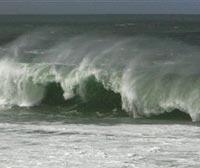 У берегов Австралии разлилась нефть. Закрыты десятки пляжей