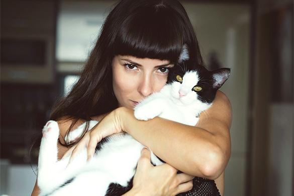 Вирландской ветклинике открылась вакансия «обнимателя котиков»