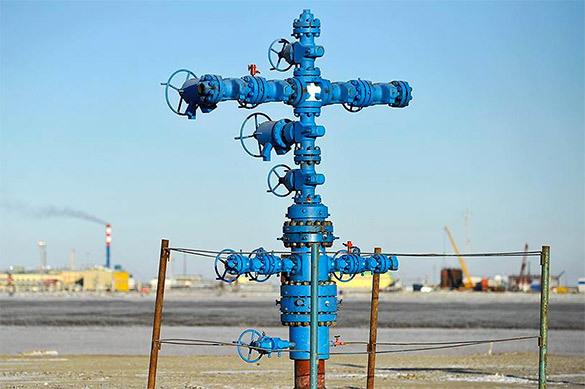 В Оренбургской области нашли новое месторождение нефти