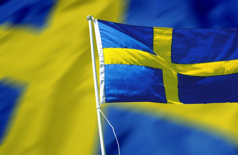 Ни одна шведская компания не намерена покидать российский рынок. 300015.png