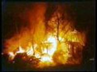 Крупный лесной пожар на Канарах локализован