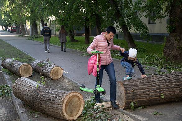 Дмитрий КИКТЁВ: Если синоптиков расстреливать за прогнозы, скор