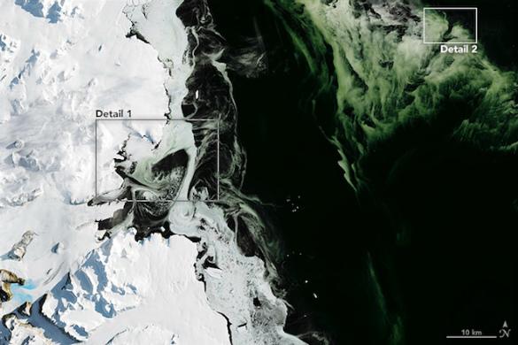 Упобережья Антарктиды появился лед зеленого цвета