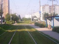 Cтоличные трамвайные пути начали зеленеть