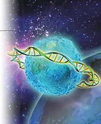 Темная материя ДНК раскрывает тайны биологии
