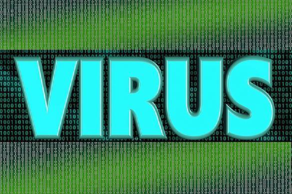 Посетители порносайтов оказались жертвами хакеров. 383025.jpeg