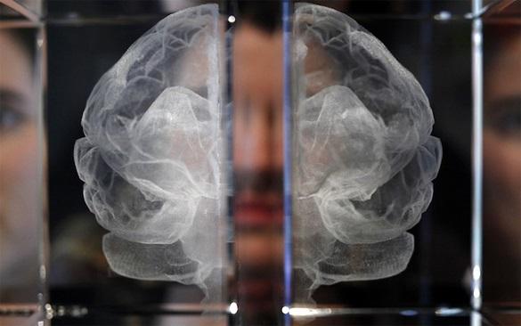 Как человеческий мозг воспринимает лица знакомых и незнакомых лю