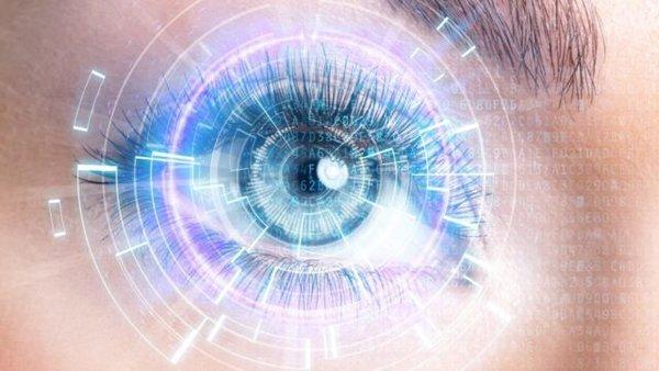 Как и что видит наш глаз?. Зрение человека