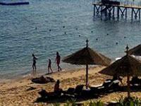 Смертельный вирус вызвал панику на курортах Египта. 238041.jpeg
