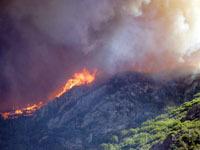 Пожар в Аризоне стал самым крупным в истории штата. fires