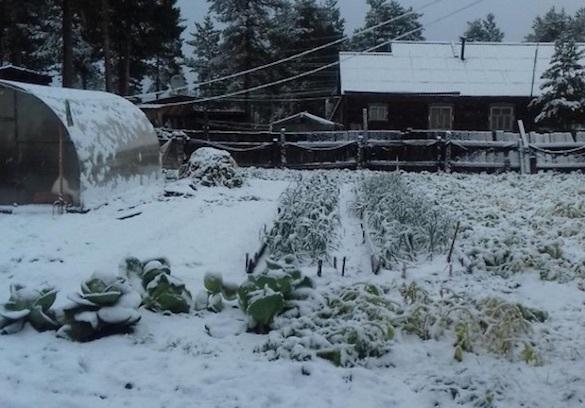 На севере Иркутской области из-за снега отопительный сезон начался с 1 сентября. 375043.jpeg