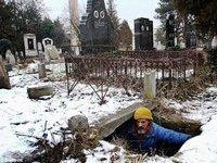 Бездомный серб уже 15 лет живет в могиле. 281044.jpeg