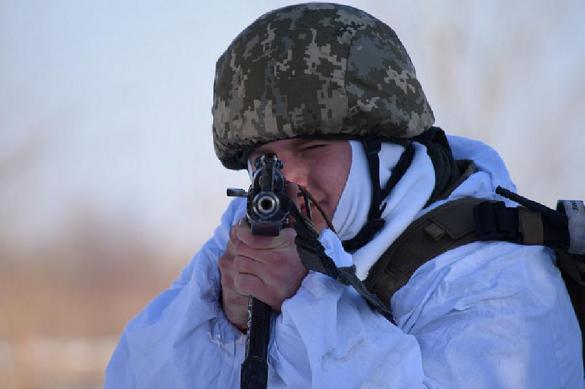 Украина перебрасывает дополнительные подразделения к ДНР. Украина перебрасывает дополнительные подразделения к ДНР
