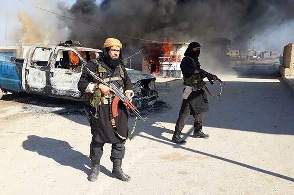 Евгений САТАНОВСКИЙ: союз Аль-Каиды и Исламского государства