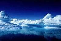 Минобороны РФ: Арктического спецназа не будет
