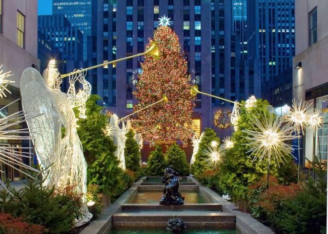 В Нью-Йорке установили огромную рождественскую ель. В Нью-Йорке установили огромную рождественскую ель