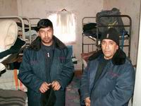 Граждане Грузии чаще всего просят предоставить убежище в России