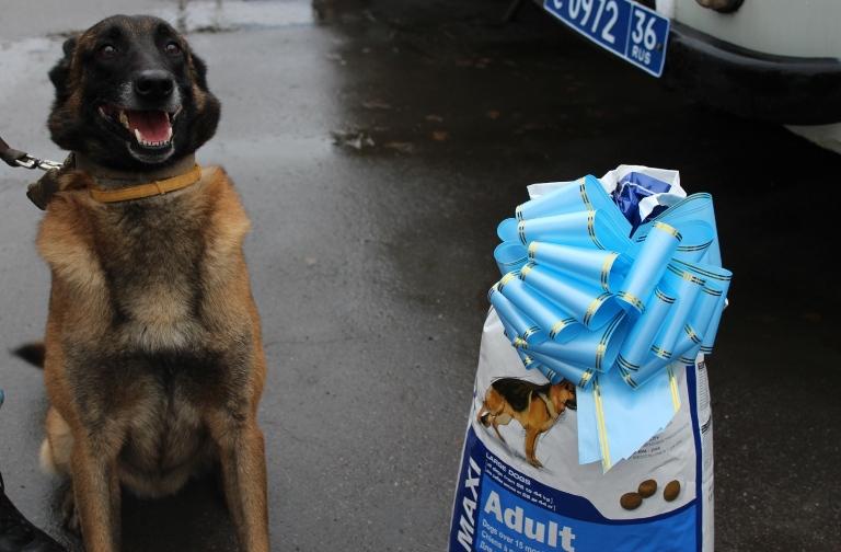 Полицейский пес получил в награду мешок корма за поимку разбойников. Полицейский пес получил в награду мешок корма за поимку разбойни