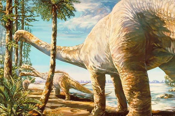 В Сибире нашли новый вид динозавра