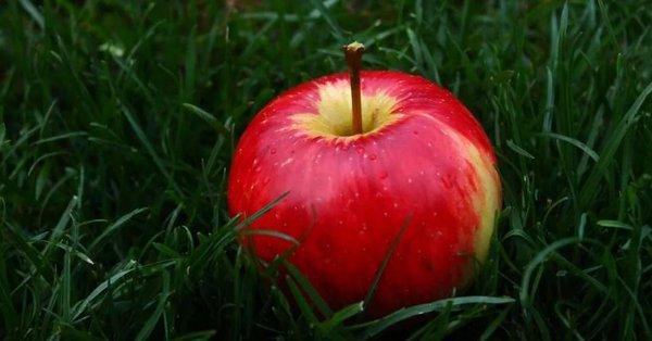 Быстрые диеты после праздников. яблоки