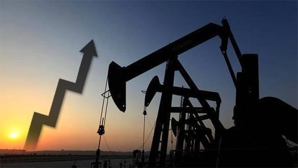 Нефть начала расти в цене, несмотря на негативные прогнозы. 305062.jpeg