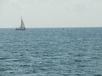 Власти Геленджика сняли запрет на купание в море. 266063.jpeg