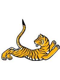 В Роттердаме откроется тигровый фестиваль