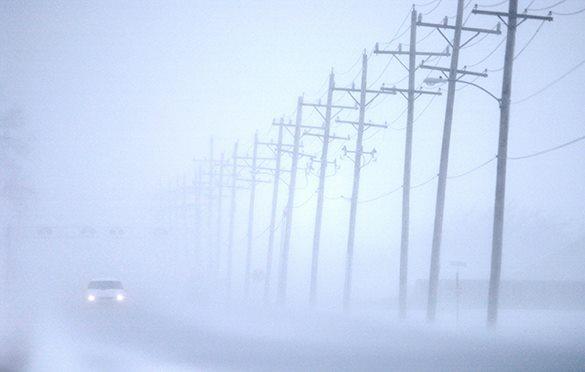 Туман парализовал работу в крупных  российских аэропортах. 303064.jpeg