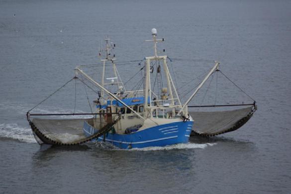 Вступил в силу приказ минсельхоза для рыбаков. 393064.jpeg