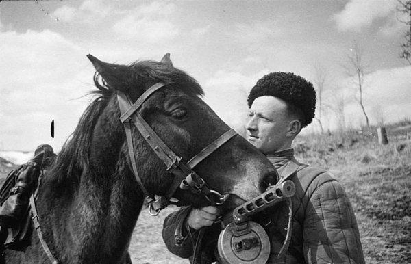 Лошади – участники Великой Отечественной войны. Лошади на войне