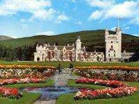 Лесные пожары в Британии коснулись и королевской резиденции. 237066.jpeg