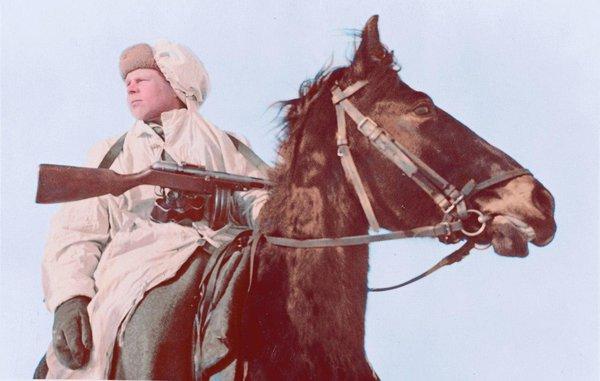 Лошади – участники Великой Отечественной войны. Лошади