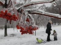 Прогнозы: в Москве немного потеплеет. 253068.jpeg