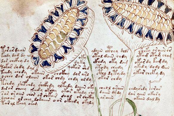 Российские математики расшифровали неразгадываемый манускрипт
