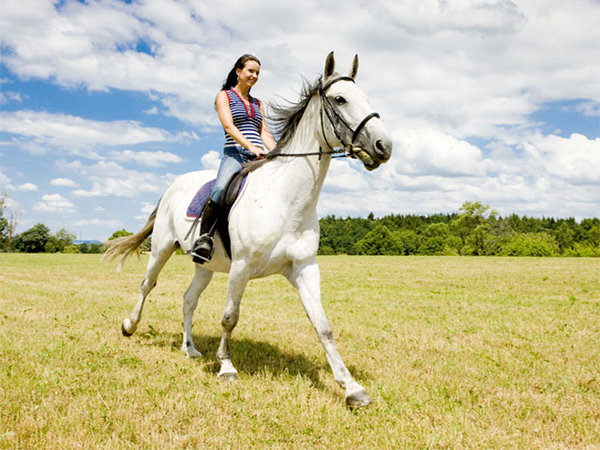 Кататься на лошади – это здорово!. Верховая езда