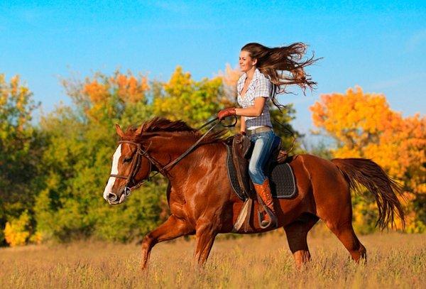 Кататься на лошади – это здорово!. Катание на лошадях
