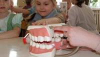 Молочные зубы под защитой