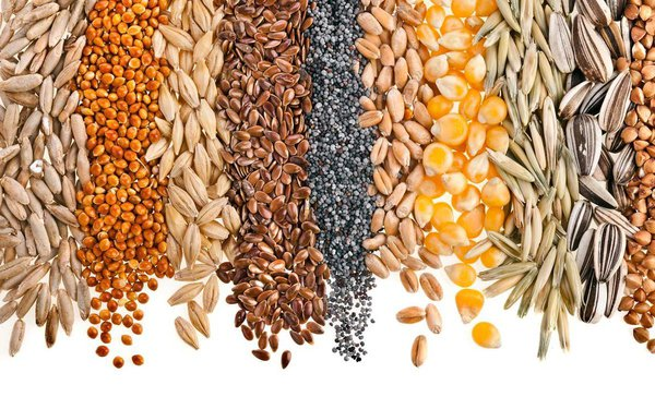 Секрет похудения не в диетах, а в системе. зерно