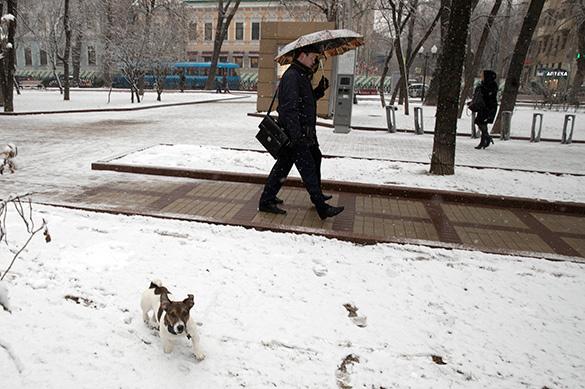 В Москву на выходные вернутся холод и метель