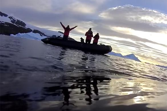 Ученые показали, чем занимаются киты вАнтарктике