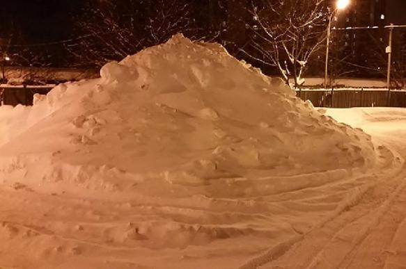 Зима убивает: ученые рассказали способ спастись. 394079.jpeg