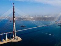 Металл на 96 млн руб украден при строительстве моста на остров Русский. 279082.jpeg
