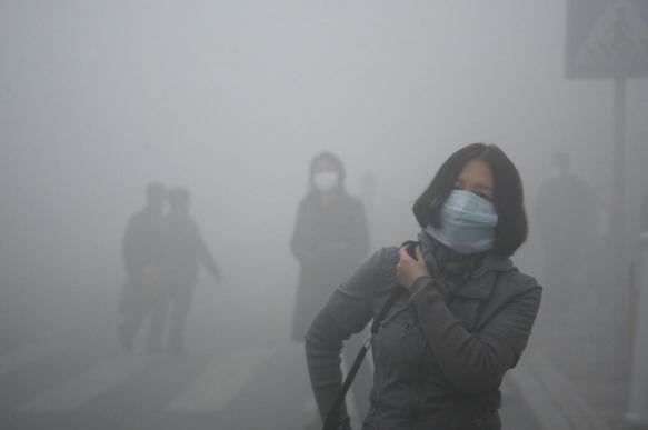 Загрязнение воздуха приводит к заболеванию астмой 4 млн детей ежегодно - ученые. 403083.jpeg