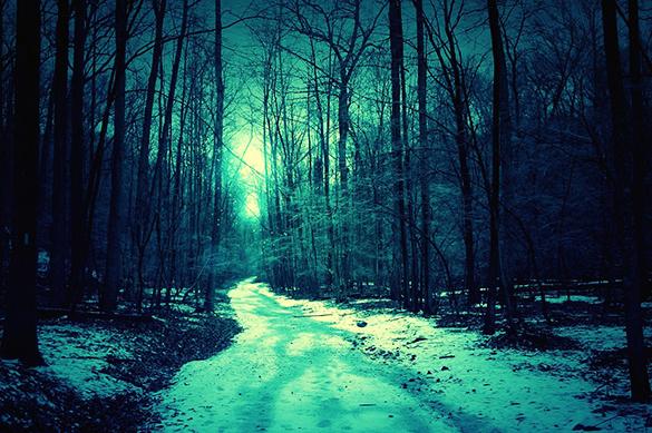 День рождения в лесу: в Подмосковье замерз 16-летний подросток. День рождения в лесу: в Подмосковье замерз 16-летний подросток