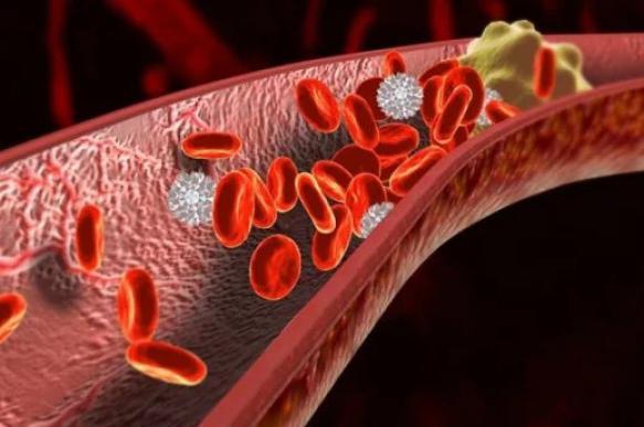 Волгоградские ученые тестируют препарат против тромбов. 396084.jpeg